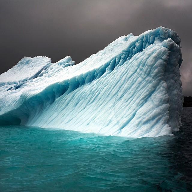 Non, la fonte des icebergs n'entraîne pas l'élévation du niveau de la mer. En revanche, celle des glaciers, glace continentale, de l'Antarctique, si.