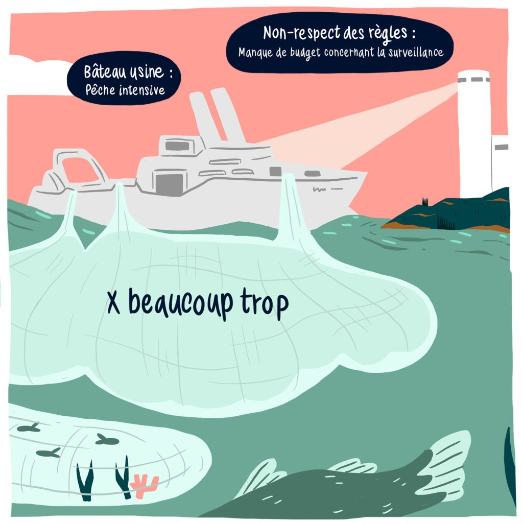 la pêche industrialisée