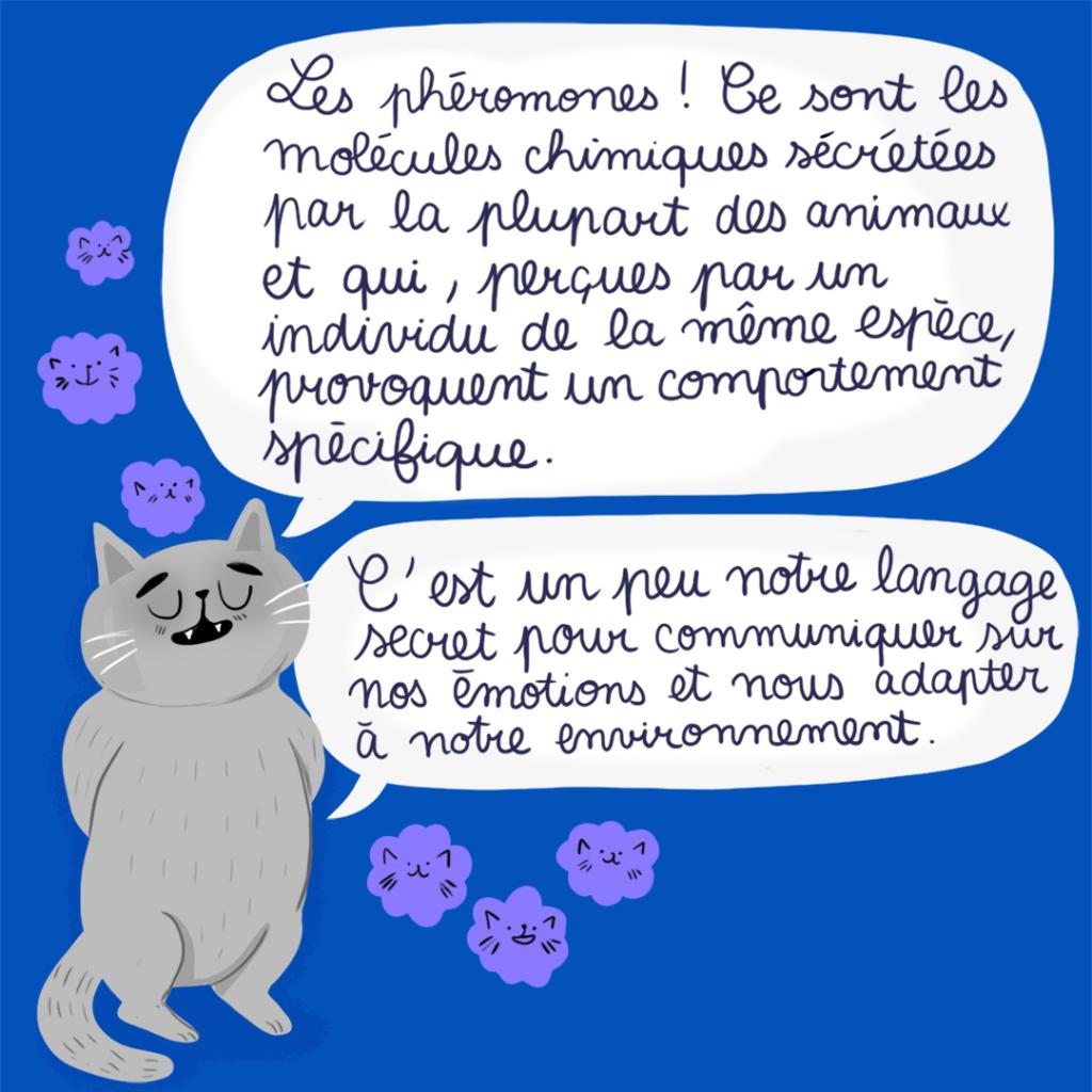 phéromones chiens et chats