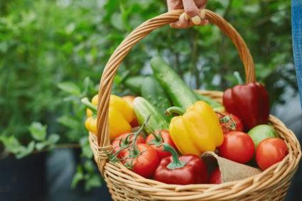 panier légumes